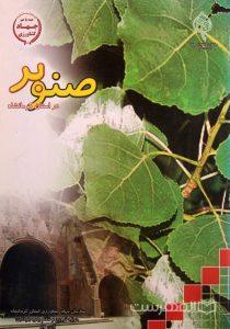 صنوبر در استان کرمانشاه, سازمان جهاد کشاورزی استان کرمانشاه (حوزه ترویج و نظام بهره برداری), آبان 87, (MZ2602)